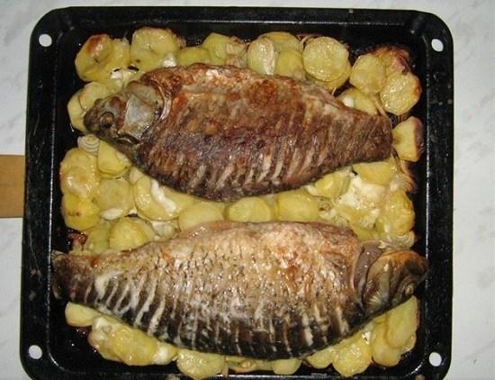 Запеченный сазан с картошкой